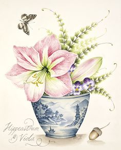 Amaryllis in a Blue and White Pot, watercolour painting by Kelly Higgs - available as a limited edition print.