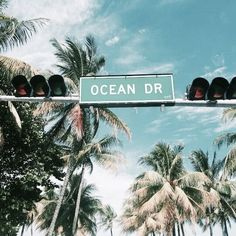 Image about summer in tropical beach 🌴 by L on We Heart It Summer Vibes, Summer Feeling, Beach Aesthetic, Summer Aesthetic, Flower Aesthetic, Blue Aesthetic, Aesthetic Fashion, The Beach, Summer Beach