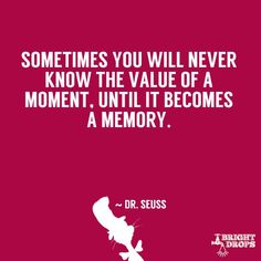 """""""Sometimes you will never know the value of a moment, until it becomes a memory."""" ~"""
