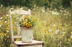 black-eyed susans and queen anne's lace