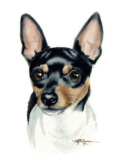 35 Ideas for tattoo animal dog watercolor painting Perro Fox Terrier, Rat Terrier Dogs, Toy Fox Terriers, Dog Line Art, Dog Art, Dog Paintings, Watercolor Paintings, Painting Art, Painting Tattoo