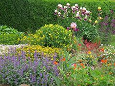 -neuer Gartentraum- Junigarten