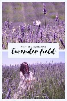 We visited this cute little lavender fields on a hot summer day in June. I've never seen such a colorful flower field before. The dancing white butterflies between the lavenders were simply out of a fairy tale. #lavender #lavenderfield #hungary
