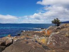 Tasmania Reference Photo - What Makes A Great Reference Photo To Paint