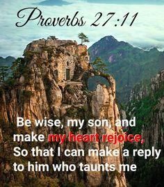Proverbs 27:11