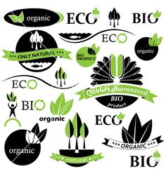 Set of bio and organic badges and labels vector