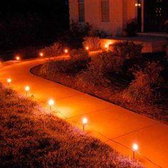 Image result for orange lights path