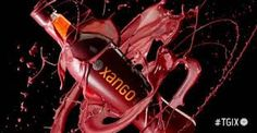 Image result for xango health
