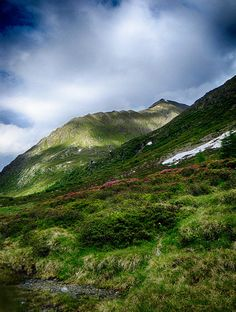 Alpine meadow landscape color photo print fine art #Austria #Defereggental #Osterreich by Visionitaliane