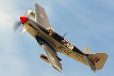 Royal Canadian Navy Navy Aircraft, Ww2 Aircraft, Fighter Aircraft, Military Aircraft, Fighter Jets, Royal Canadian Navy, Naval Aviator, Fixed Wing Aircraft, Ww2 Planes