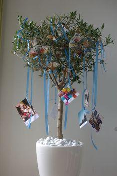 Afbeeldingsresultaat voor geldboom maken