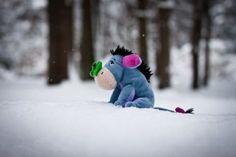 Eeyore in the snow. Poor little guy!