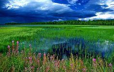 Finnish Lake - Finland 88 sc0018r by fveronesi1