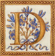Calligraphy Borders, Calligraphy Alphabet, Illuminated Letters, Illuminated Manuscript, Medieval Books, Font Art, Beautiful Calligraphy, Letter Art, Collage Art