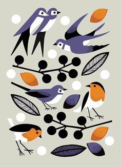 How to draw birds: 18 illustration tips - Digital Arts