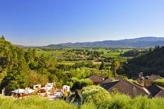 Napa Valley  Rutherford, California