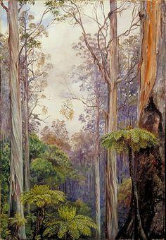 Gum Trees and Tree Ferns, Victoria, Australia,   Marianne North