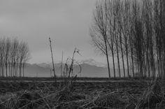 Casale Monferrato in AL la vista dei monti poco fuori la città