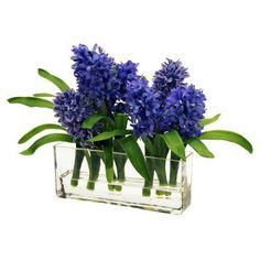 Jane Seymour Botanicals 12 in. Purple Hyacinths with Rectangle Glass Vase Silk Flower Arrangement - WP9042-MI