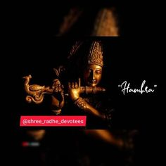 Krishna Video, Krishna Gif, Radha Krishna Songs, Radha Krishna Love Quotes, Cute Krishna, Shree Krishna, Navratri Devi Images, Ahoi Ashtami, Happy Birthday Love Quotes