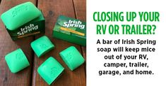 A bar of Irish Spring soap will keep mice out of your RV, camper, trailer, garage, and home.