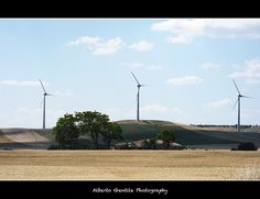 What Is Wind Energy, Building A Wind Turbine, Wind Power, Alternative Energy, Sunset, Beach, Water, Green, Outdoor