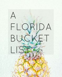 A Florida Bucket List -- We Took the Road Less Traveled blog