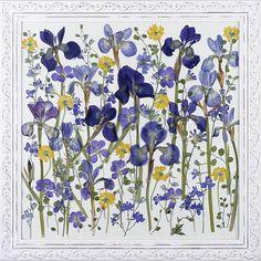Pressed Flowers by Petal Annie