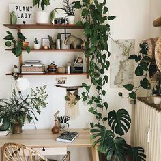 Plants fix everything! This space by @friederikchen is inspiring us to rearrange our workspace in the new year and add more plants! What is your favorite indoor plant goddess circle?