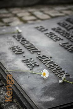 Auschwitz II-Birkenau site. Signs of memory left on the monument which honours all victims of the camp.