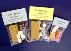 Emergency S'mores...because you NEVER know when you might need one!