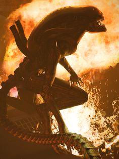 Xenomorph backlit by flame Alien Vs Predator, Predator Alien, Giger Alien, Hr Giger, Science Fiction, Alien Art, Alien Pics, Anime Alien, Alien Pictures