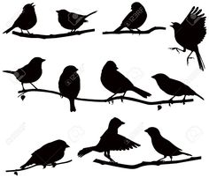 Illustration of Vector images silhouettes of birds on a branch vector art, clipart and stock vectors. Flying Bird Silhouette, Tree Silhouette, Silhouette Images, Free Vector Images, Vector Art, Vector Graphics, Branch Vector, Bird Stencil, Flora Und Fauna