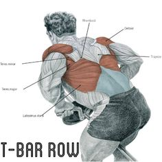T-bar row Weight Training Workouts, Gym Workouts, Muscle Fitness, Fitness Tips, Fitness Outfits, Female Fitness, Fitness Quotes, Fitness Goals, Fitness Motivation