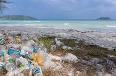 Plastic pollution threatens marine life
