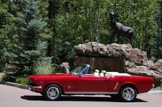 I'll take one of these, please and thank you... '65 Mustang convertible