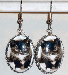 Ohrringe Katze Damen Hänger Ohrschmuck Modeschmuck ohne Stein Glas Cabochon