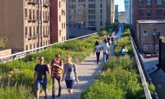 Manhattan makeover for London with floating green walkway plan | UK news | The Guardian New York High Line, Camden Road, Uk Capital, Linear Park, Finsbury Park, University College London, Uk News, Nature Reserve