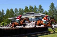 Perth Races. Always a successful event.