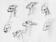 Image result for dragon expressions