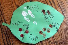 http://www.readingconfetti.com/2013/04/fingerprint-lady-bug-life-cycle-craft.html