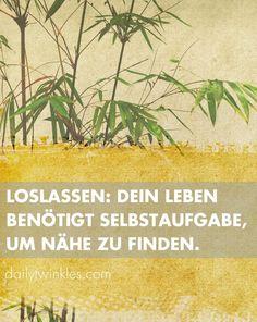 Loslassen: dein Leben benötigt Selbstaufgabe, um Nähe zu finden.