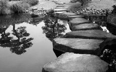 Photo about Stepping stones bridge across a pond in a Japanese Garden. Image of garden, lake, japan - 5584669 Backyard Water Feature, Ponds Backyard, Building A Pond, Pond Water Features, Natural Pond, Pinterest Garden, Moving Water, Exterior Makeover