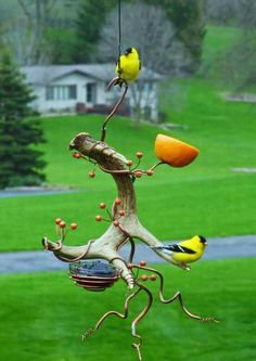 What an interesting fruit feeder for the birds. What an interesting fruit feeder for the birds. What an interesting fruit feeder for the birds. Bird House Feeder, Diy Bird Feeder, Humming Bird Feeders, Oriole Bird Feeders, Garden Crafts, Garden Projects, Garden Ideas, Diy Garden, Herb Garden
