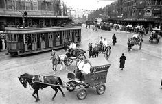 Photo taken looking west across Taylor Square and down Oxford Street in Sydney, NSW ca. Oxford Street, Zebras, Historical Photos, Old Photos, Tub, Sydney, Past, Arch, Horses