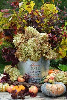 Easy DIY Fall Harvest Arrangement ©homeiswheretheboatis.net #fall #autumn #arrangement #harvest #hydrangeas
