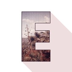 Collage Graphic Design Letter E