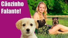 Dona diz ''I love you'' pro seu cãozinho, veja oque ele responde!
