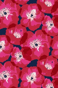 Red and Pink Poppies on Indigo by Jill Byers. This colorful poppies illustration is available on fabric, wallpaper, and gift wrap. Click to see more beautiful drawings by this designer.