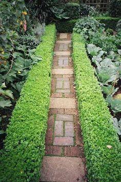 Garden.**.